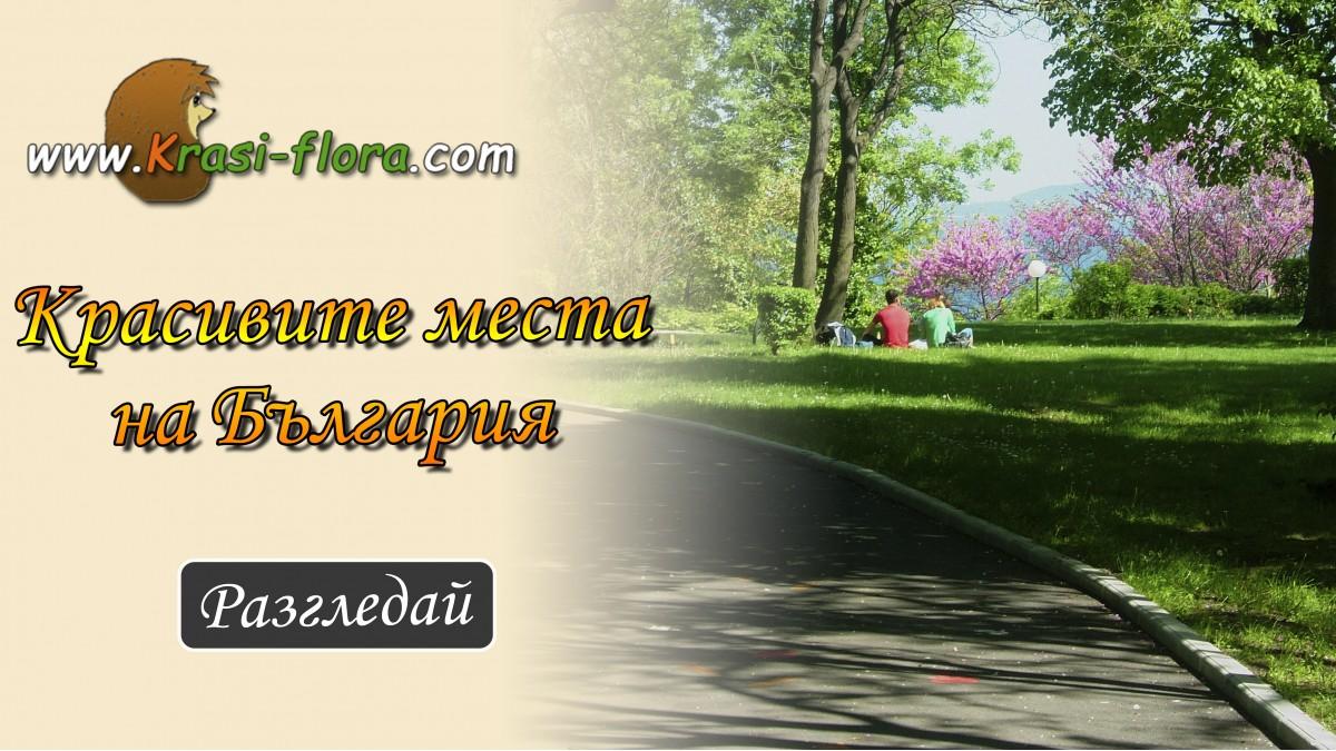 Красивите места на България