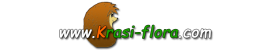 Е-магазин  на www.Krasi-flora.com