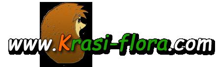 Krasi-flora.com logo